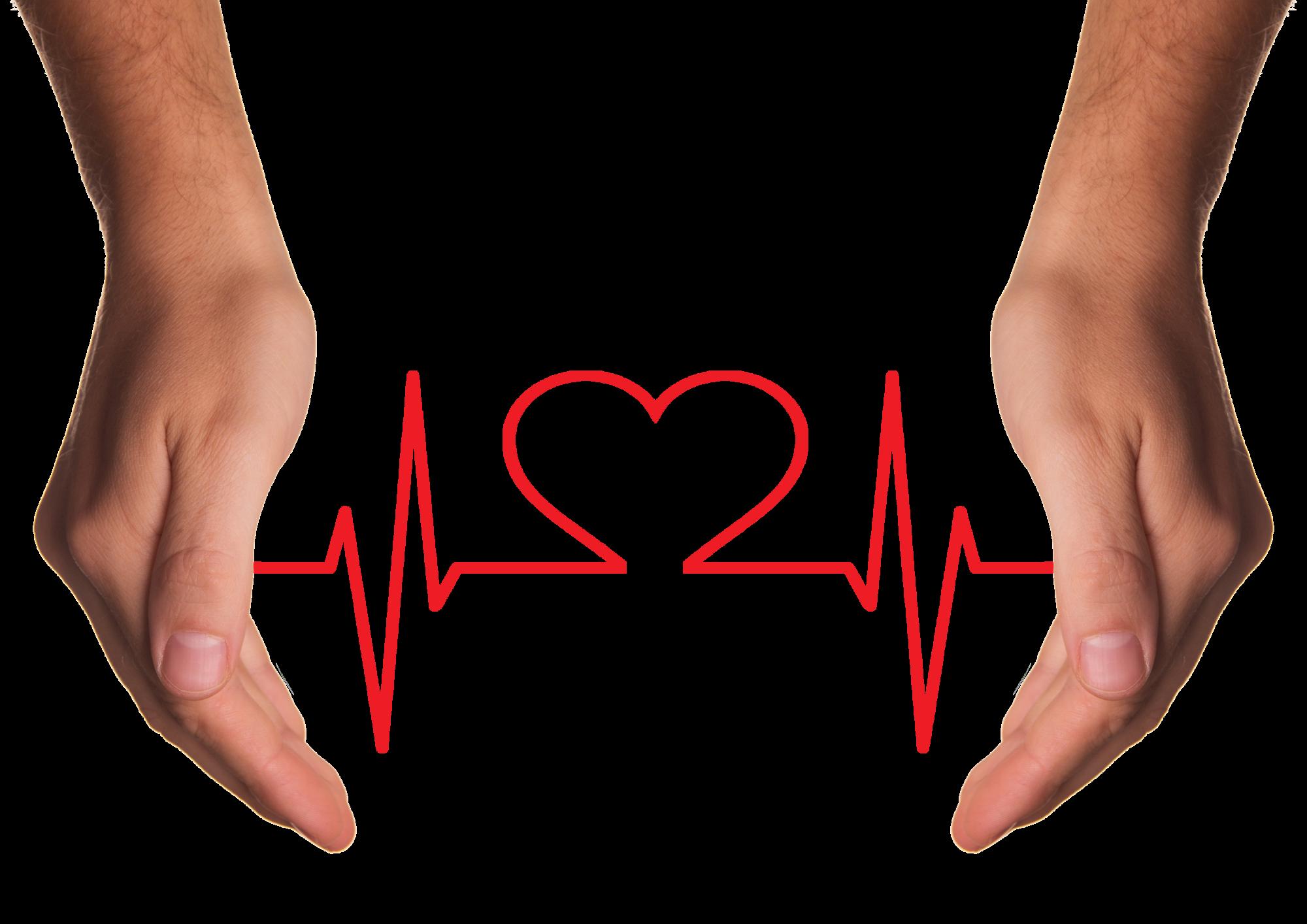US Cardiology Market